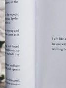 Máy dịch thơ: Thực tiễn và hạn chế