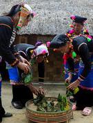 Lễ mừng cơm mới của đồng bào dân tộc Si La