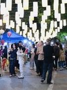 Hang Luoc Street flower market opens for Tet in Hanoi
