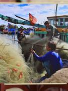 Vietnam's culture, coastal life impresses Russian audience