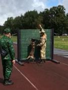 Đội tuyển chó nghiệp vụ tích cực tập luyện tại Nga để thi đấu Army Games