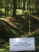 Sau hơn một thế kỉ, chiến trường diễn ra trận Verdun vẫn ô nhiễm nặng