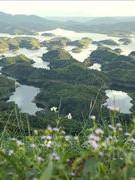 """""""Vườn địa đàng"""" ở Đắk Nông"""