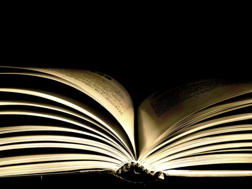 Cơ bản chính yếu của văn chương