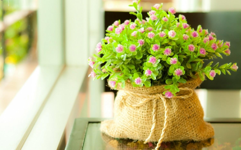 flower pot pots and stock photos 413076