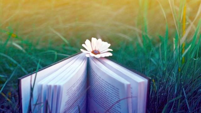 Văn học Việt Nam cần sự bứt phá mạnh mẽ hơn