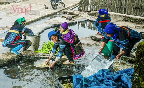 Chuẩn bị thực phẩm cho lễ tảo mộ