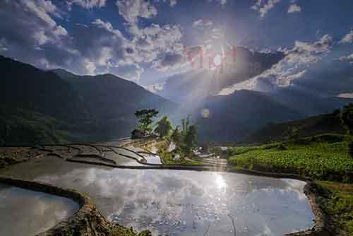 Nhà của người Mông thường ở trên đỉnh núi, nơi họ canh tác trồng lúa, ngô