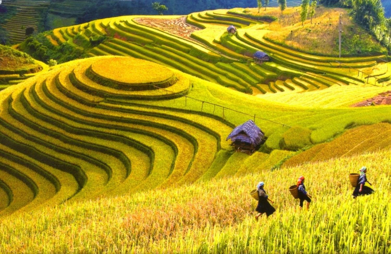 Chùm thơ của tác giả Nguyễn Trọng Văn